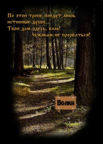 http://volkles.ucoz.ru/images/reklama2.jpg